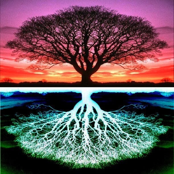 Why Grounding With The Energy Of Earth Is Important For Your Well-Being