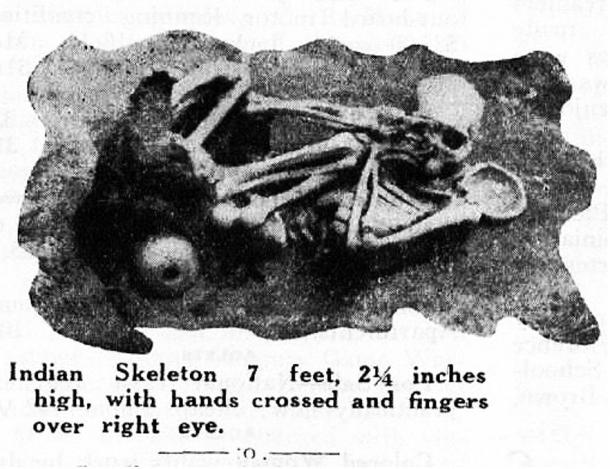 Figure 14: An over 7-foot skeleton found on Catalina Island.
