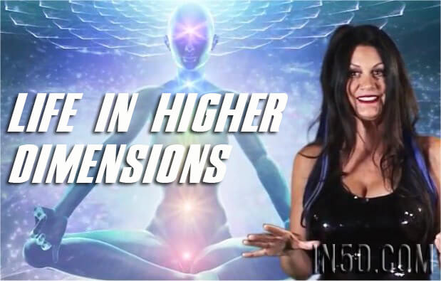 Life in Higher Dimensions