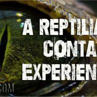 A Reptilian Contact Experience