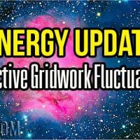 Energy Update – Collective Gridwork Fluctuations