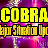 COBRA – A Major Situation Update