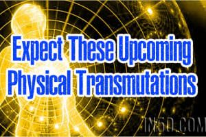 Expect These Upcoming Physical Transmutations