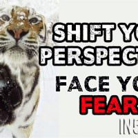 Shift Your Perspective – Face Your Fears