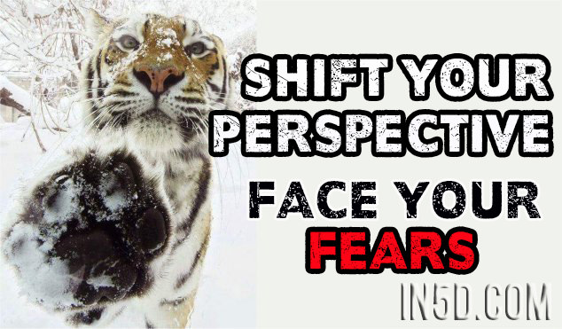 Shift Your Perspective - Face Your Fears