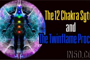 The 12 Chakra Sytem And The Twinflame Process