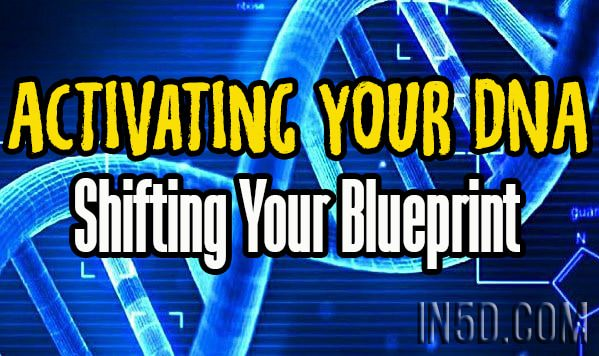 Activating Your DNA - Shifting Your Blueprint