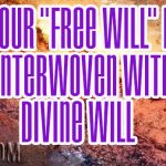 "Your ""FREE WILL"" Is Interwoven With DIVINE WILL"