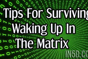 7 Tips For Surviving Waking Up In The Matrix