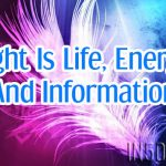Light Is Life, Energy And Information
