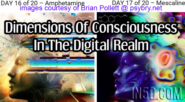 Dimensions Of Consciousness In The Digital Realm