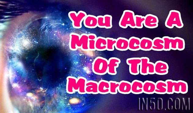 You Are A Microcosm Of The Macrocosm