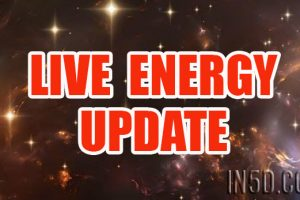 LIVE Energy UPDATE