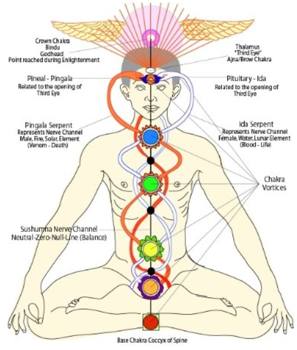 xgmcjkh0iugxhfg earth chakras and vortices in5d in5d