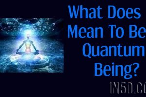 What Does It Mean To Be A Quantum Being?