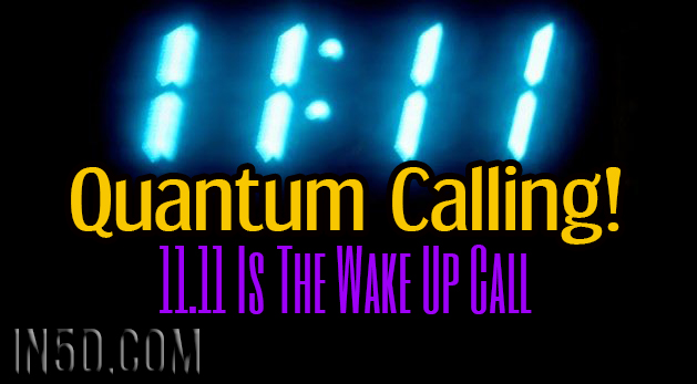 Quantum Calling! - 11.11 Is The Wake Up Call