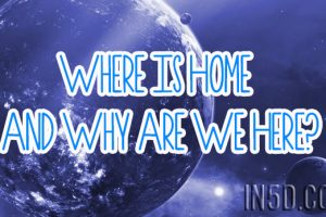 Where Is Home And Why Are We Here?