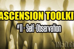 Ascension Toolkit #11 – Self-Observation