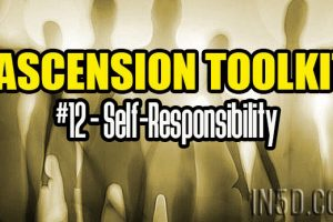 Ascension Toolkit #12 – Self-Responsibility