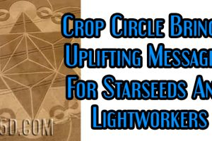 Crop Circle Brings Uplifting Messages For Starseeds And Lightworkers