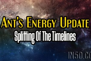 Ant's Energy Update – Splitting Of The Timelines