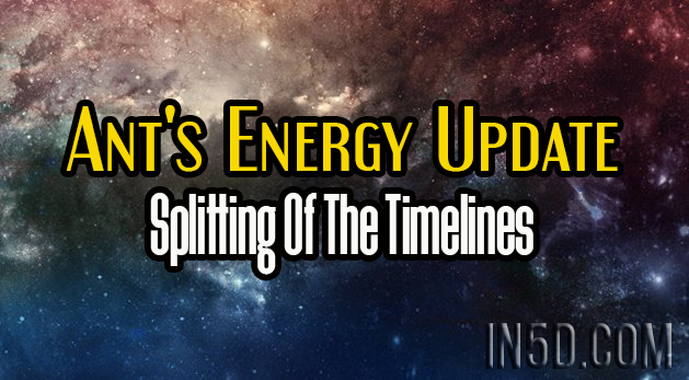 Ant's Energy Update - Splitting Of The Timelines