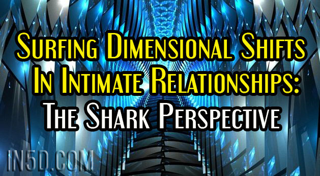 Surfing Dimensional Shifts In Intimate Relationships: The Shark Perspective