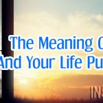 The Meaning Of Life, And Your Life Purpose