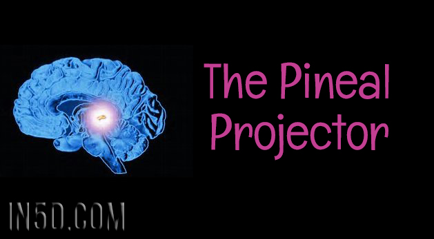 The Pineal Projector