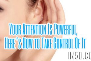Your Attention Is Powerful, Here's How to Take Control Of It