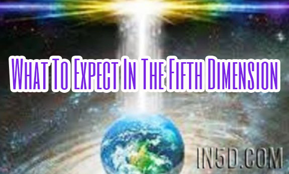 What To Expect In The Fifth Dimension