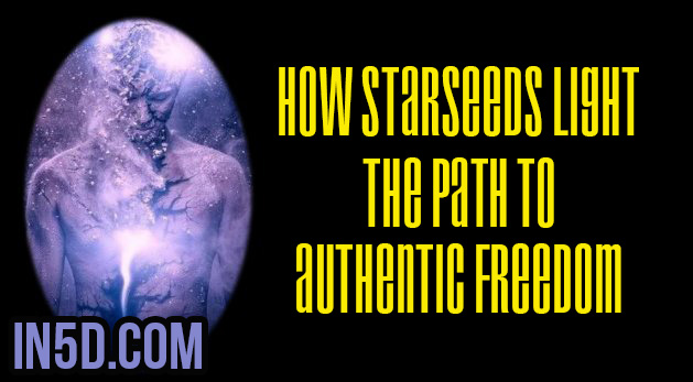 How Starseeds Light The Path To Authentic Freedom
