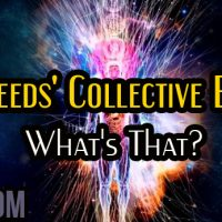 Starseeds' Collective Energy: What's That?