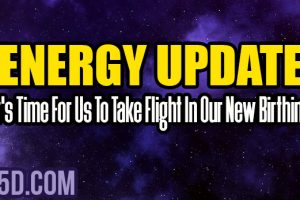 Energy Update – It's Time For Us To Take Flight In Our New Birthing