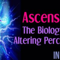 Ascension – The Biology Of Altering Perception