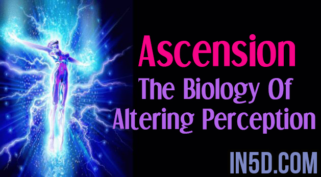 Ascension - The Biology Of Altering Perception