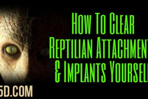 How To Clear Reptilian Attachments & Implants Yourself
