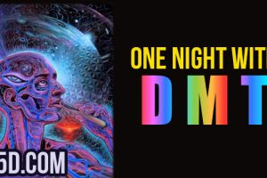 One Night With DMT – My Experience