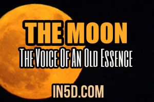 The Moon – The Voice Of An Old Essence