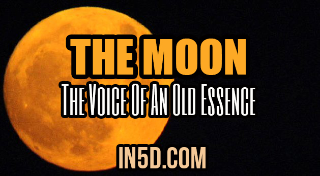 The Moon - The Voice Of An Old Essence