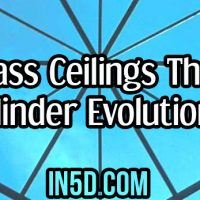 Glass Ceilings that Hinder Evolution