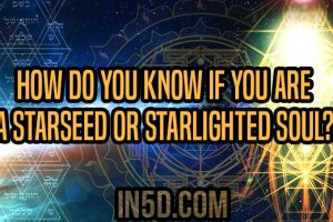 How Do You Know If You Are A Starseed Or Starlighted Soul?