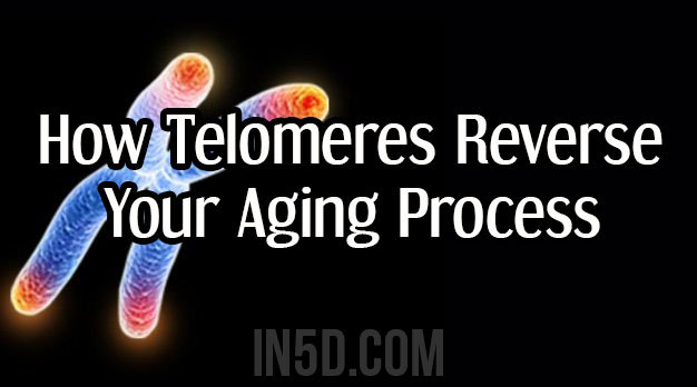 How Telomeres Reverse Your Aging Process - When Science & Spirituality Merge