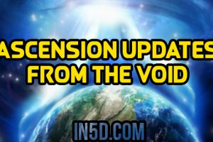 Ascension Updates From The Void