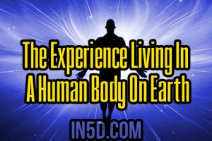 The Experience Living In A Human Body On Earth