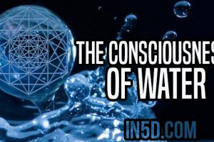 The Consciousness Of Water