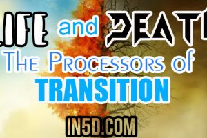 Life and Death – The Processors of Transition