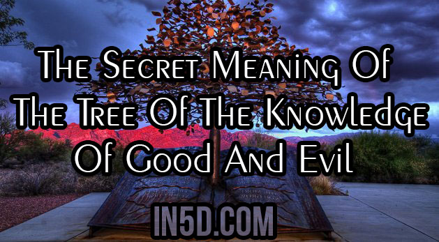 The Secret Meaning Of The Tree Of The Knowledge Of Good
