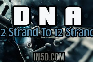 DNA: 2 Strand To 12 Strand. Where Do You Stand?