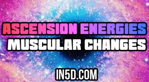 Ascension Energies - Muscular Changes